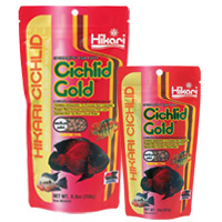 Hikari Cichlid Cichlid Gold